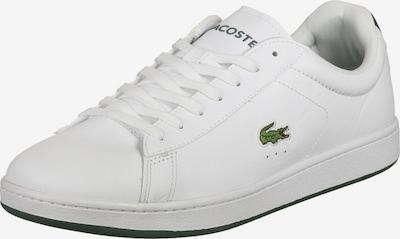 LACOSTE Baskets basses 'Carnaby' en vert / noir / blanc, Vue avec produit