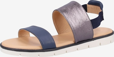 Darkwood Sandalen in blau, Produktansicht
