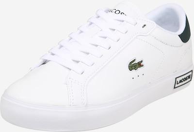 LACOSTE Baskets basses en vert foncé / blanc, Vue avec produit