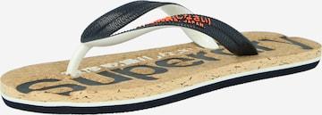 Superdry T-Bar Sandals in Blue