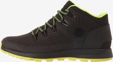 Chaussure de sport à lacets TIMBERLAND en noir