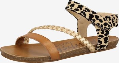 Blowfish Malibu Sandale in beige / braun / schwarz, Produktansicht