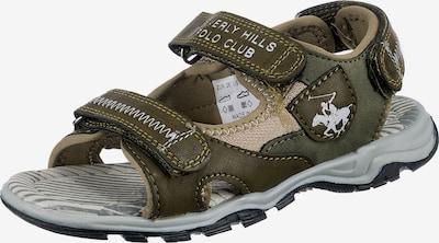 Beverly Hills Polo Club Sandale in khaki / oliv / weiß, Produktansicht