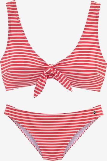 s.Oliver Bikini in rot / weiß, Produktansicht