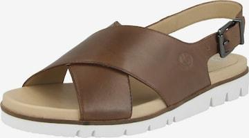 GERRY WEBER SHOES Sandale 'Gulla 01' in Braun